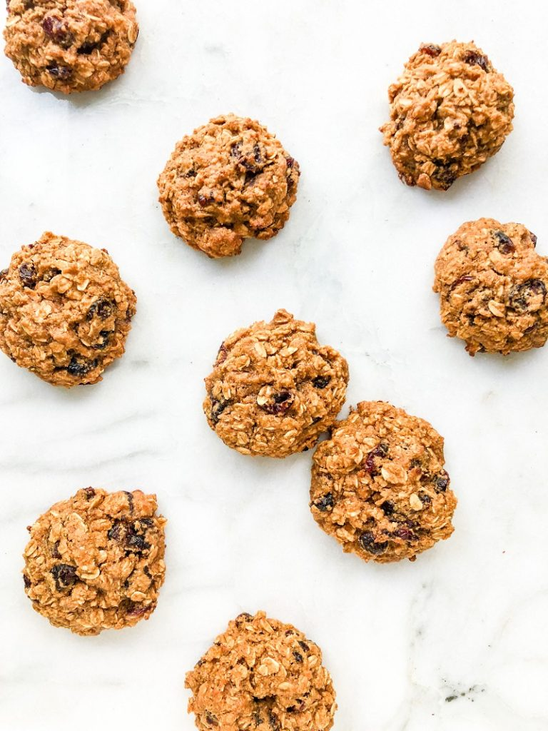 Vegan Oatmeal Cranberry Cookies   Living Well With Nic